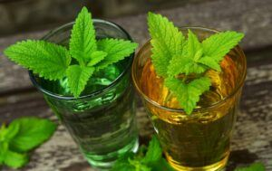 Lemon Balm For Anxiety and Depression