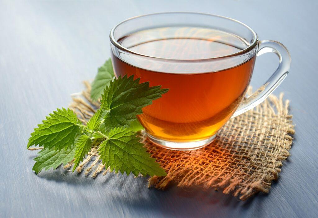 Nettle Tea for asthma
