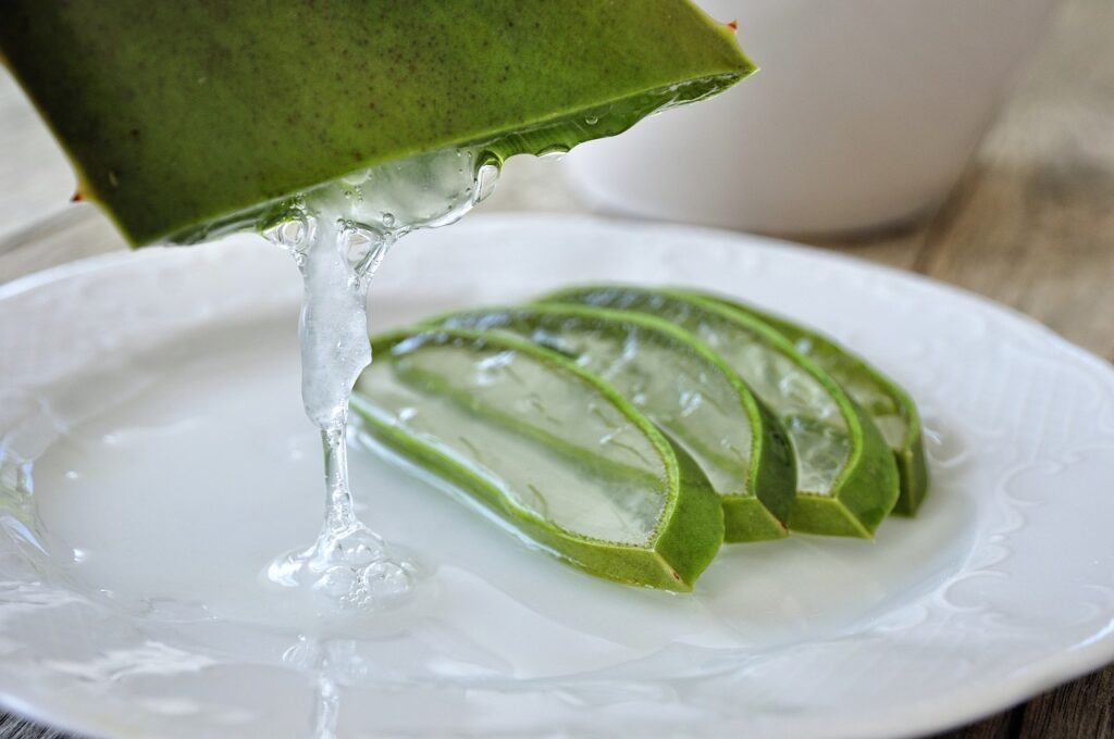 Aloe For Diabetes