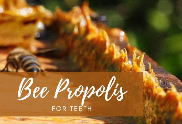 bee propolis for teeth