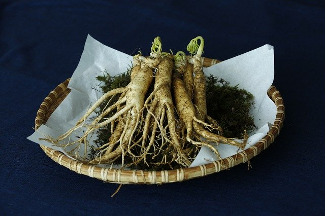 panax ginseng for ed