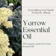 about yarrow essential oil